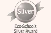 Eco soc银奖